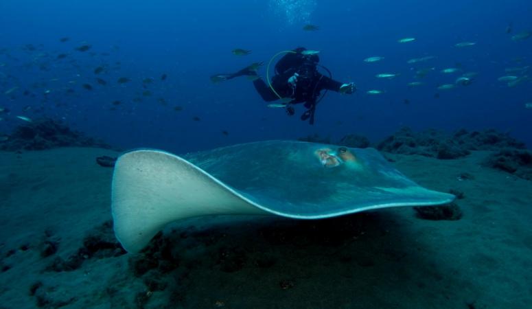 Lanzarote: drie favorieten van Dennis Rabeling