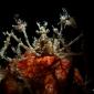 John Landa - Eindelijk weer eens een duik en een duikreport