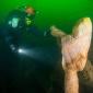 Expeditie Borkumse Stenen 2019 - Alle beetjes helpen