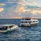 Emperor Maldives liveaboards boek je exclusief bij Diving World