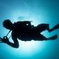DOSA - De duikongevallen en -incidenten van 2020