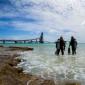 Bonaire - Tips voor duikresorts en -centra