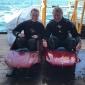 Expeditie Borkumse Stenen 2019 - «Ben, wil je met me duiken?»