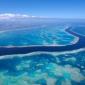 1,3 miljoen euro voor idee dat koraal redt