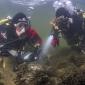 ANEMOON-weekend: help onderwaterleven in kaart te brengen