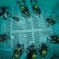 Patrick Van Hoeserlande - Experimental Deep Dive Team editie 2018