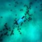 Joost van Uffelen - Melkweg van zeesterren