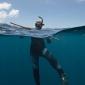 Saba haaienexpeditie 2019 - De heks en de haai