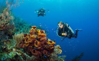 Vijf vragen over de duikmedische zelfcheck